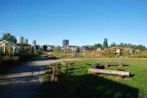 Grillpladsen